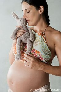 Pregnant woman holding stuffed rabbit