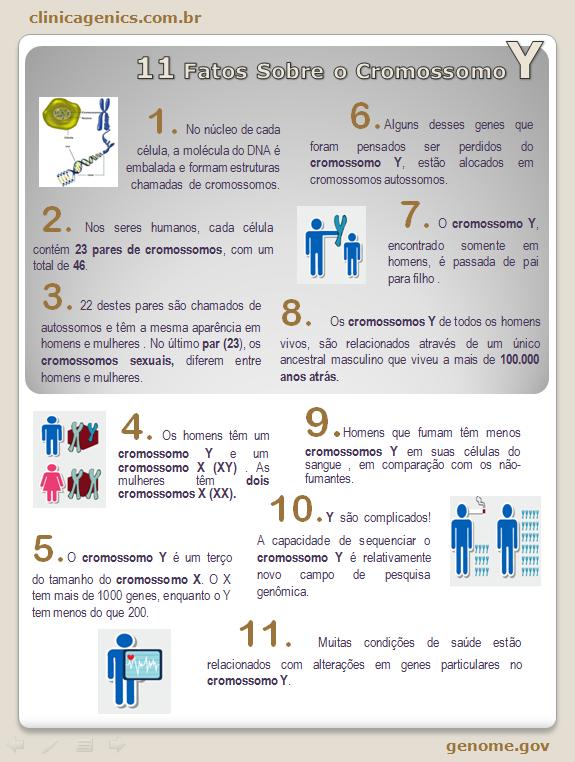 11 fatos sobre o CromossomoY
